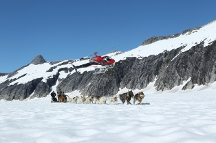 You might want to experience the dog sledding in Alaska